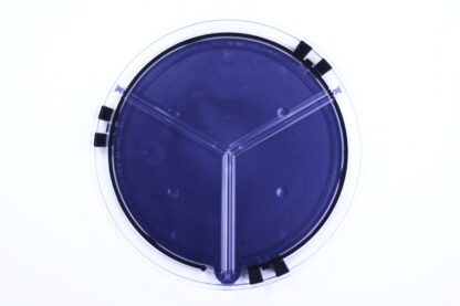 clear round plate with blue bottom without activity card
